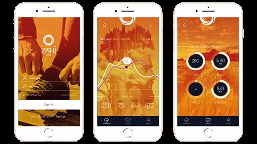 How the ZISHI App Works?